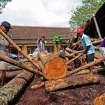 Indonesia Negara Pertama Pegang FLEGT