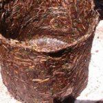 Pot Limbah Jerami Pengganti Polybag